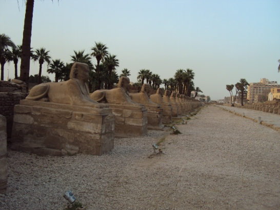 avenue of the sphinxes luxor egypt