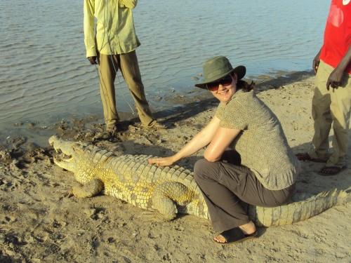 Deah sitting on back of crocodile sacred lake at sabou burkina faso africa
