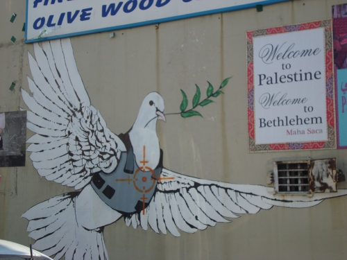 dove with vest on palestine bethlehem street art banksy israel