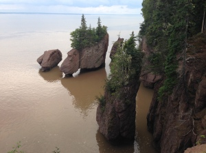 Bay of Fundy high tide
