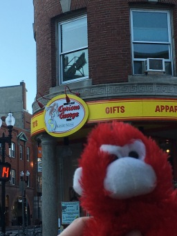 Stuffed Monkey at Curious George Store in Boston Harvard