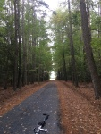 Biking in Delmarva VA