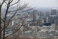 Montreal from the mountain