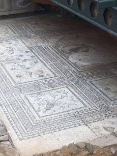 Roman Mosaic Tile floor