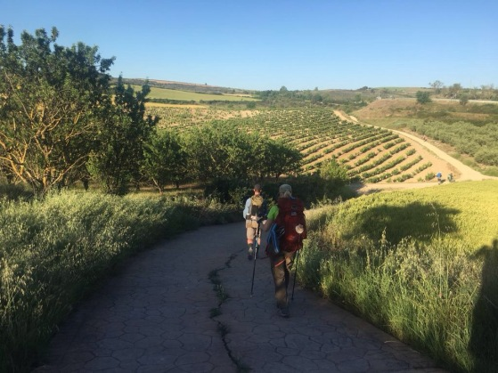 Back on the trail, Camino Santiago
