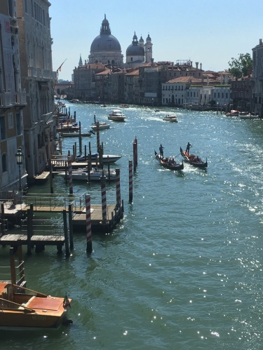 The Grand Canal Italy Venice
