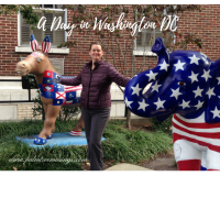 A Day in DC: White House, Renwick, National Geographic, and T.Roosevelt Island