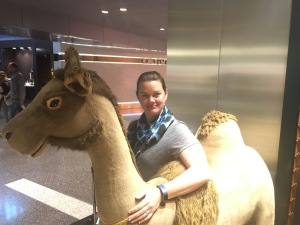 camel in Doha airport