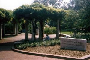 Francis Scott Key Park in Georgetown DC
