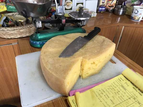 Yak Cheese- delicious